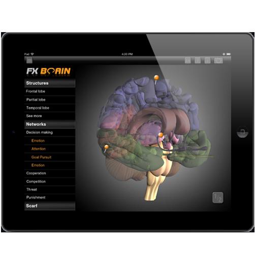 Brain app for neuro leaders